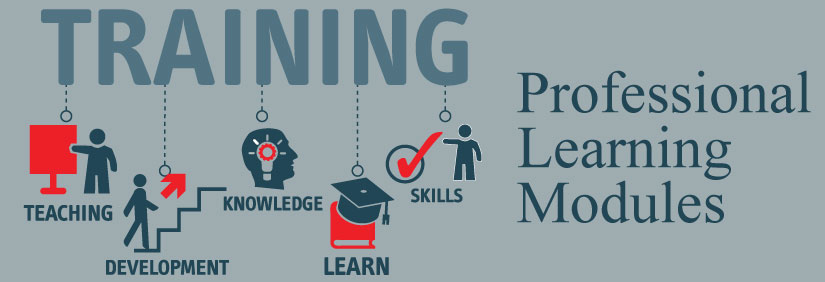 Professional Learning Modules Header