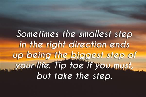 Sometimes the Smallest Step Quote