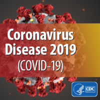 What is the Coronavirus (COVID-19)?