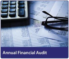 Annual Financial Audit