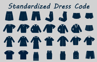 Standardized Dress Information