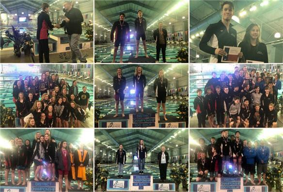 Swimmers and divers rack up awards at district meet