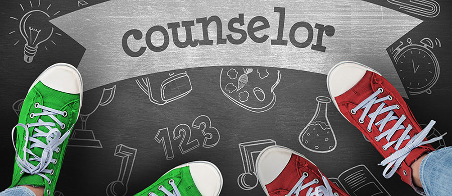 Counselor Header Graphic